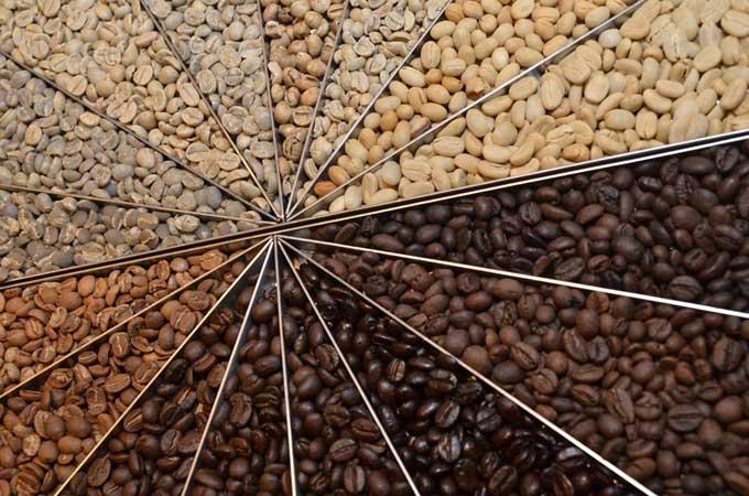 Coffee Bean Roasts